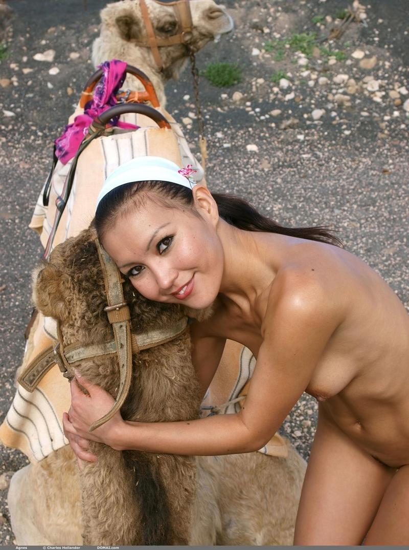 Сэкс с верблюдом 17 фотография