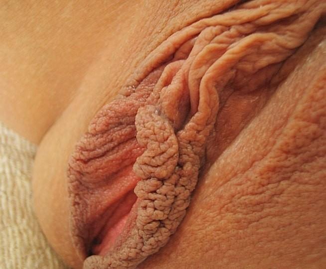 половые губы торрент большие