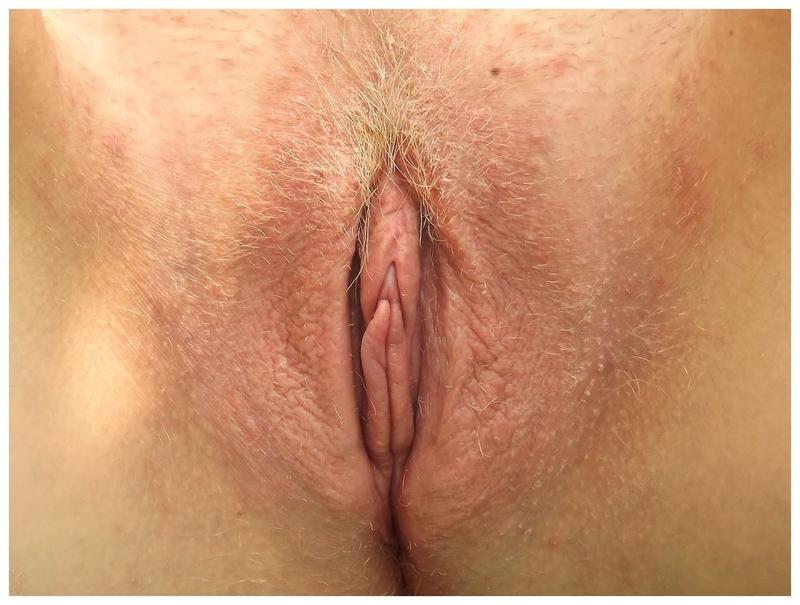 Фото красивые женские половые губы 5 фотография